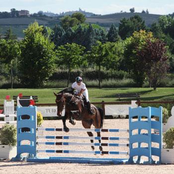 riviera-horses